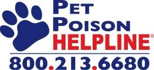 pet-poison